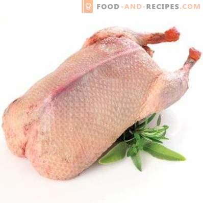 Патешко месо: полза и вреда