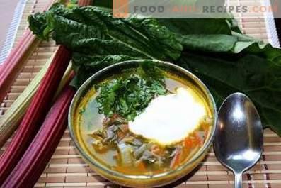 Супа с ревен