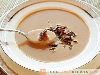 Супа от пюре от лисица
