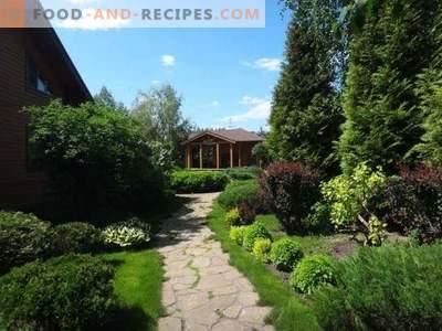 Пролетна защита на градински растения от вредители и болести